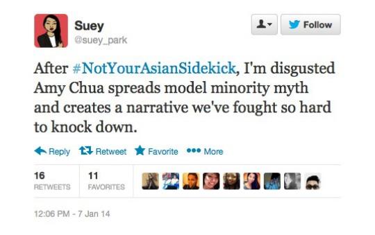 Suey.Park.Not.Your.Asian.Sidekick (1)