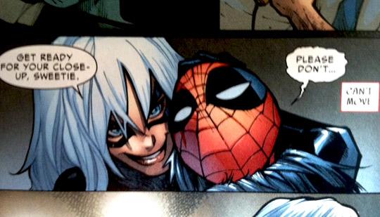 Black Cat Spider Man