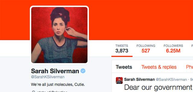 Sarah Silverman Twitter