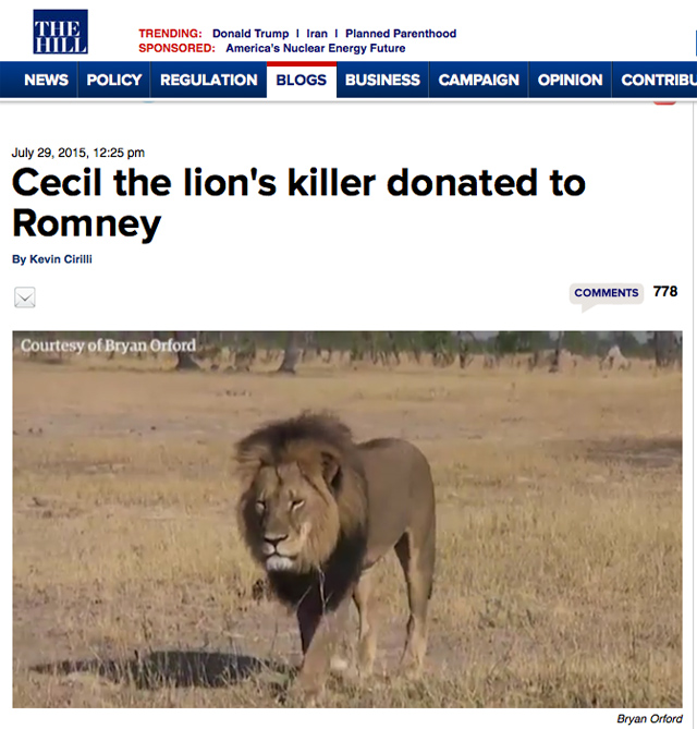 Cecil the Lion The Hill Romney